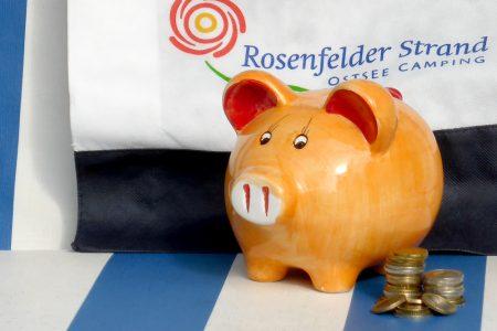 Sparschwein mit Münzen im Strandkorb