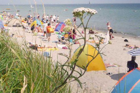 Ostseestrand mit Besuchern