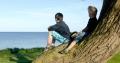 Jungen sitzen auf Baum und schauen auf die Ostsee