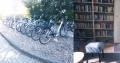Collage mit Leihfahrrädern und Bücherei