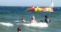 In der Ostsee schwimmende Gäste